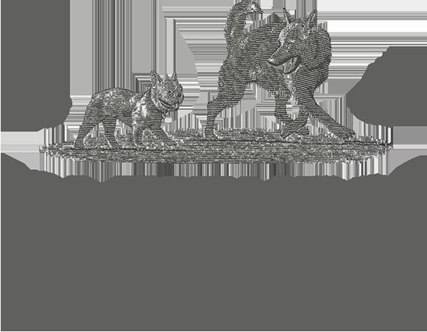 K9_FitnessLogo