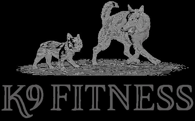 K9 Fitness
